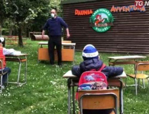 A scuola nel Bosco – Rassegna stampa